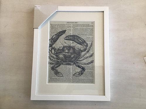 Framed Print Crab on Book Print