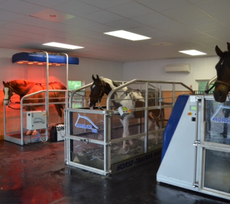 Dr. Brendan Furlong's State of the Art Soundness Center Chooses HORSE GYM USA®