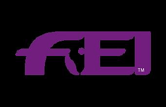 Official FEI logo thumbnail for Press_14