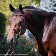 amber, pony lane farm photoshoot-7.jpg