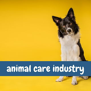 Copy of Animal Care Industry (4).png