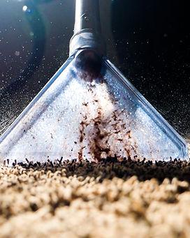 20210203-Dirt Cleanup.jpg