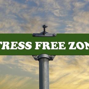 Money Stress (Part 2):  Making Financial Stress, Less Stressful