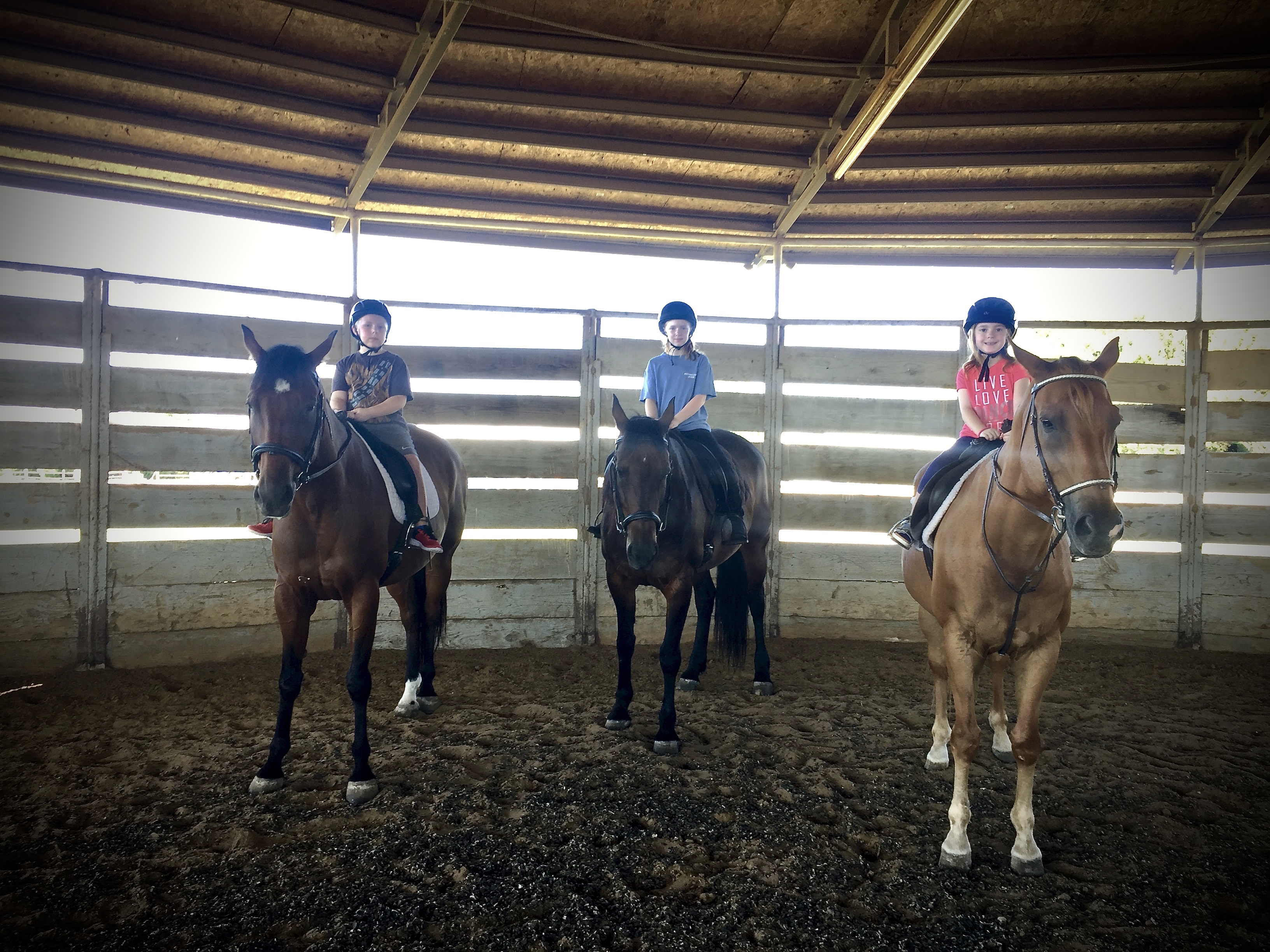 M-Bar-K Farms | lesson horseback