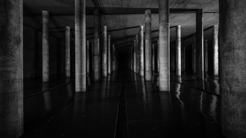 Säulenha