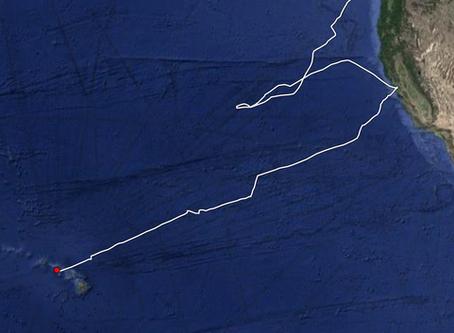 Passage Notes - San Francisco to Hawaii