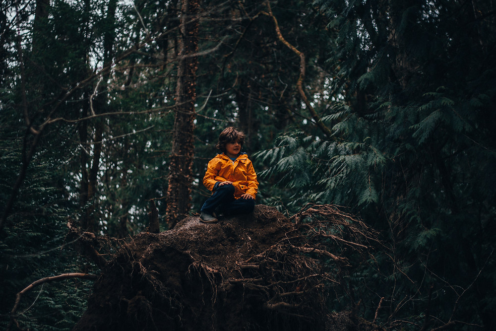 On being in the forest-rewildhood