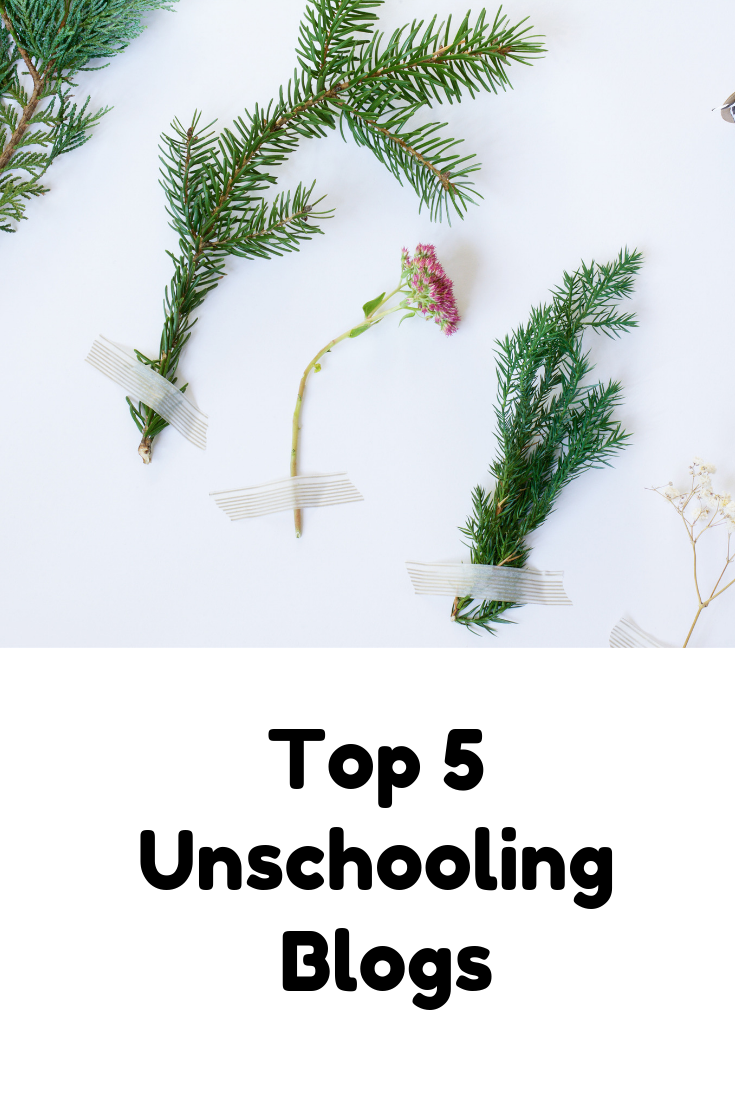 The 5 BEST Unschooling Blogs for 2019 : Rewildhood