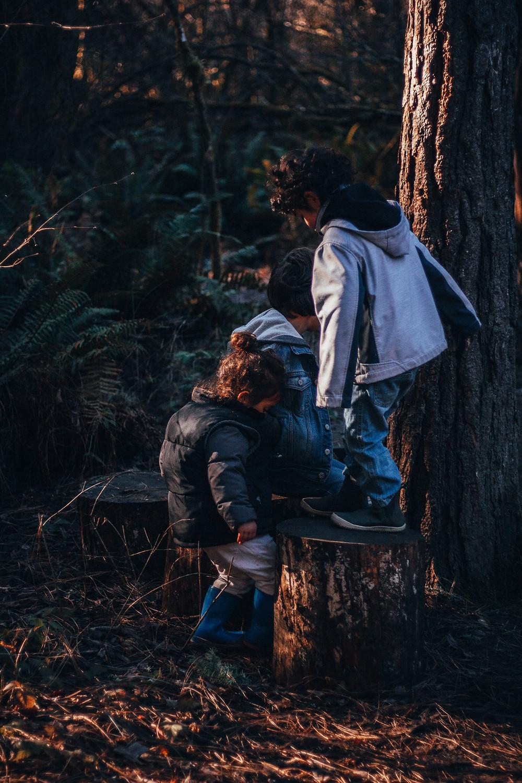 Studying Mushroom with Kids : Rewildhood