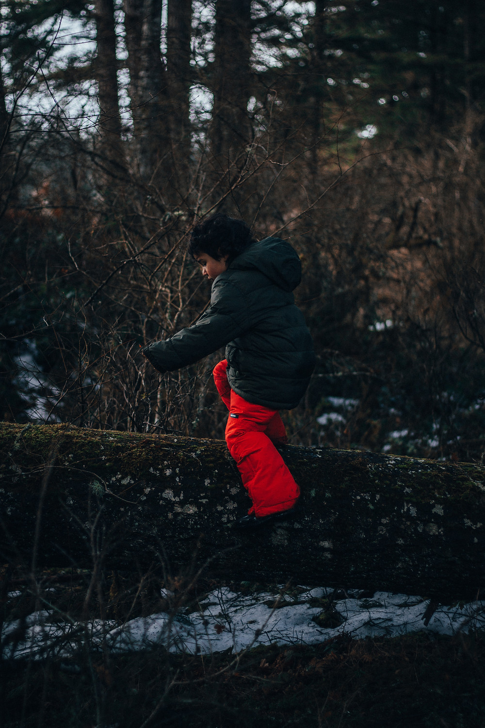 Natural Movement for Kids: Rewildhood
