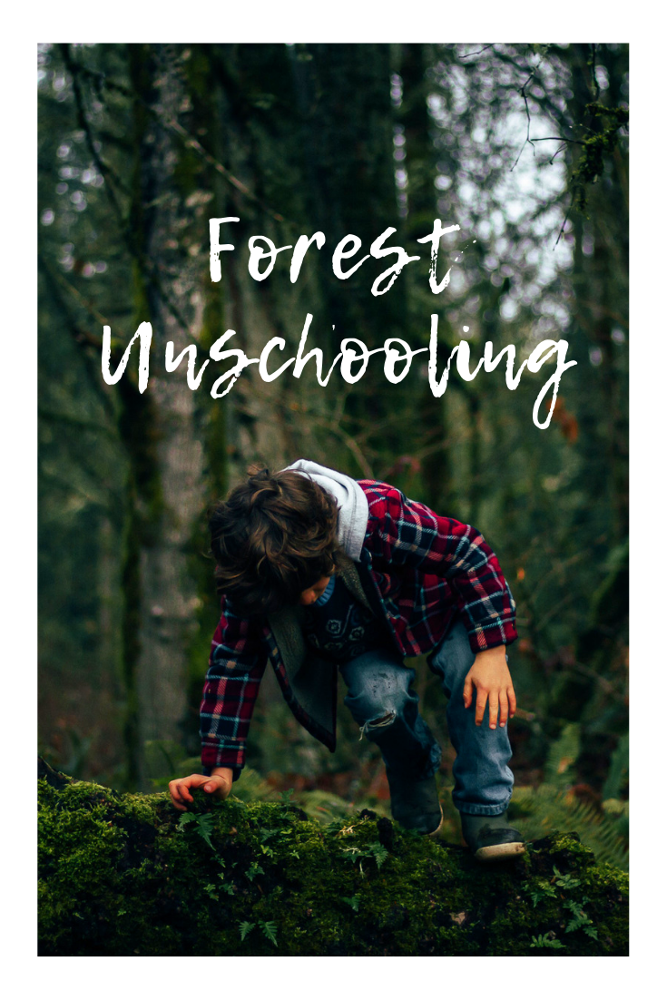 Unschooling day in the life-Rewildhood