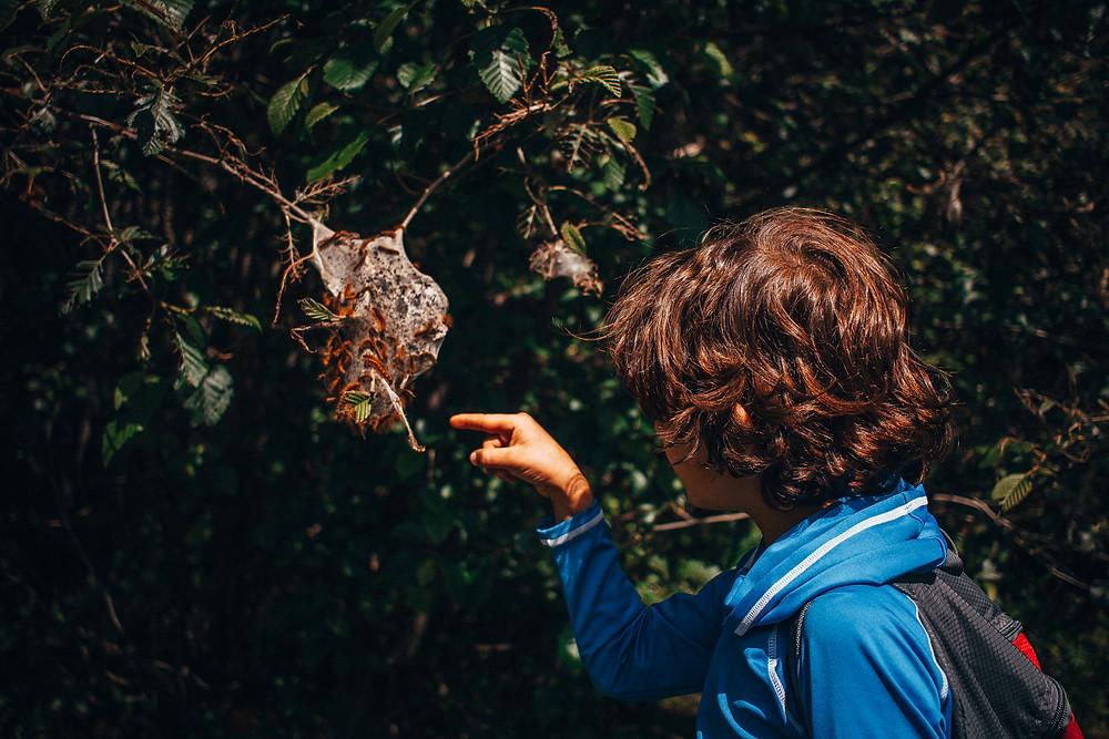 Kari Wilde- Unschooling- Rewildhood