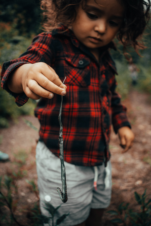 Unschooling Science: Kari Wilde