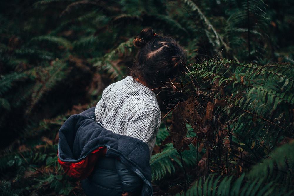 Unschooling: Rewildhood