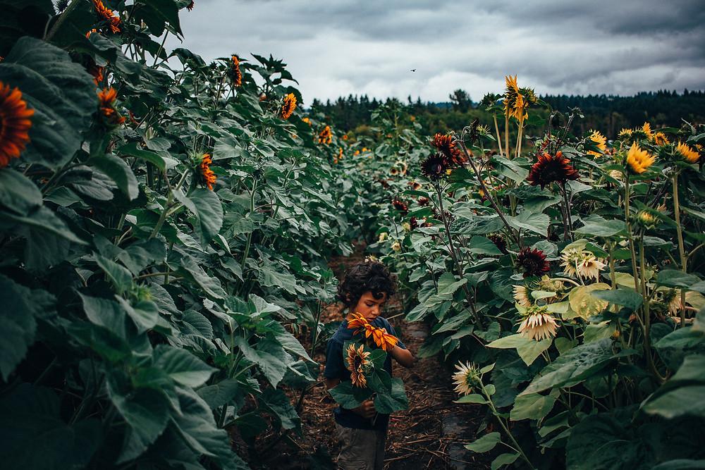 Rewildhood: Summer in the Pacific Northwest
