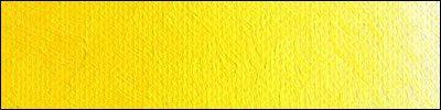 D11 Cadmium Yellow Light