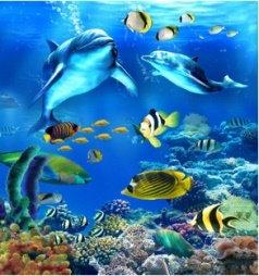 צביעה לפי מספר - אוקיאנוס
