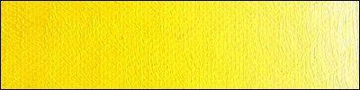 B12 Scheveningen Yellow Light