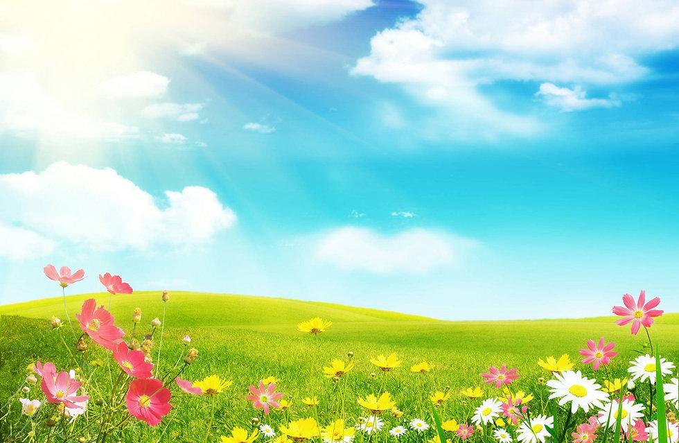 BEAUTIFUL FLOWERS.jpg