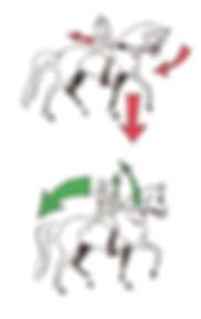pk_zeichnung7_0006_ok.jpg