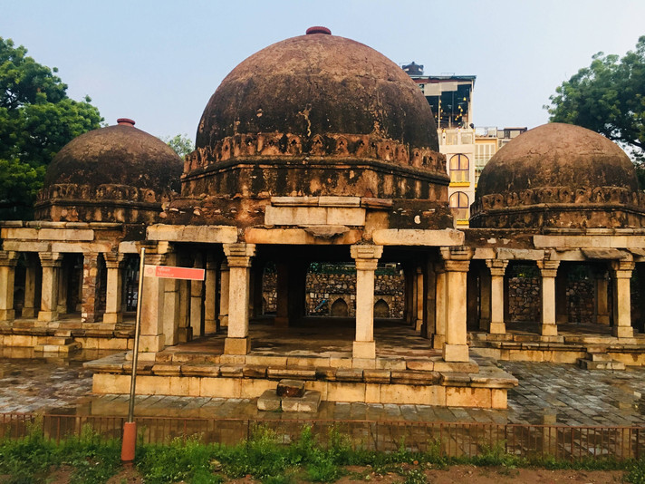 A Trail to the Historic Hauz Khas Complex with Moby Sara Zachariah