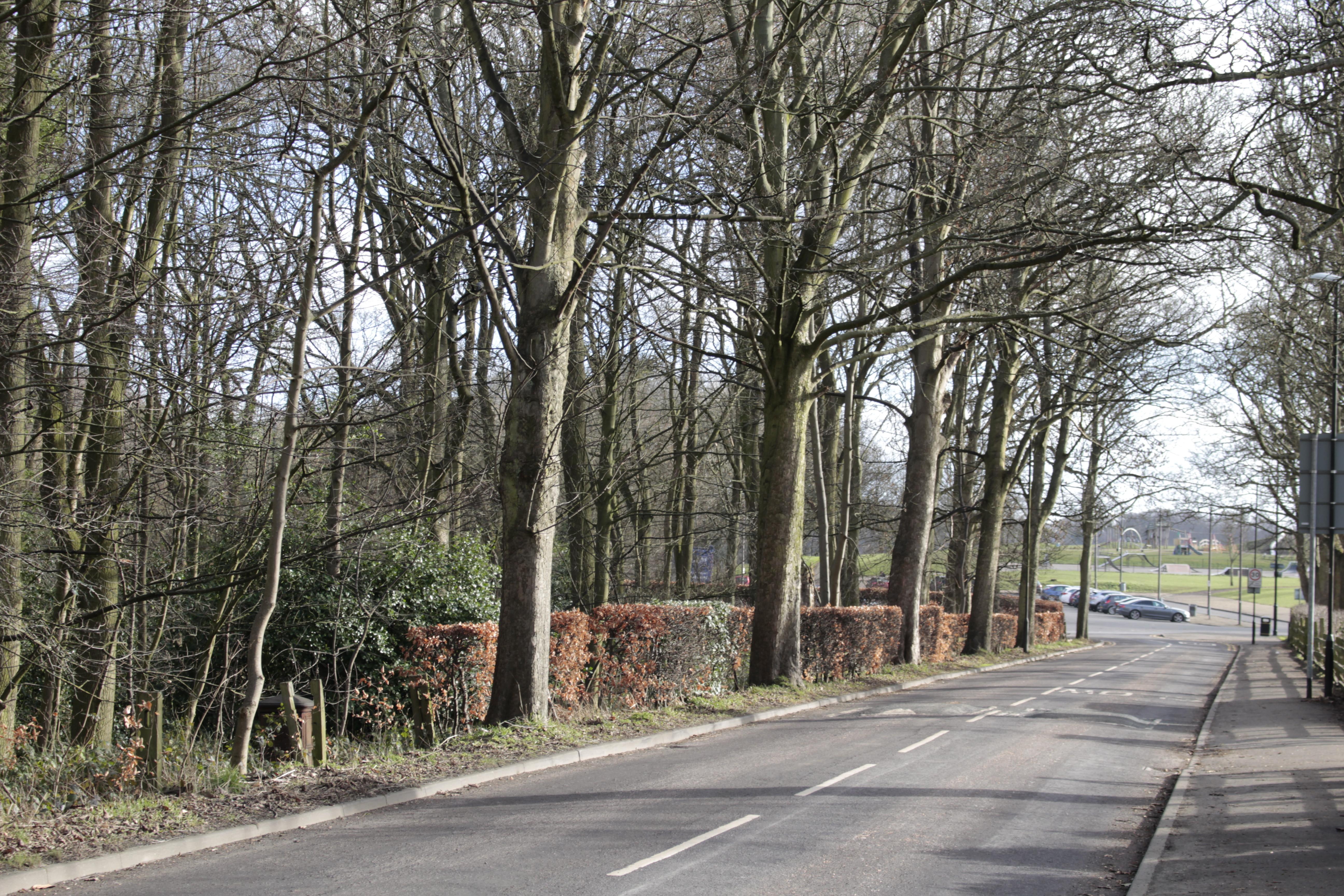 Lidgett Park Road.jpg