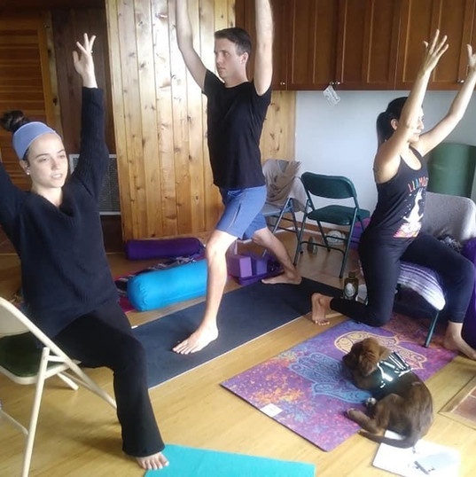 Accessible Yoga Training, 2020