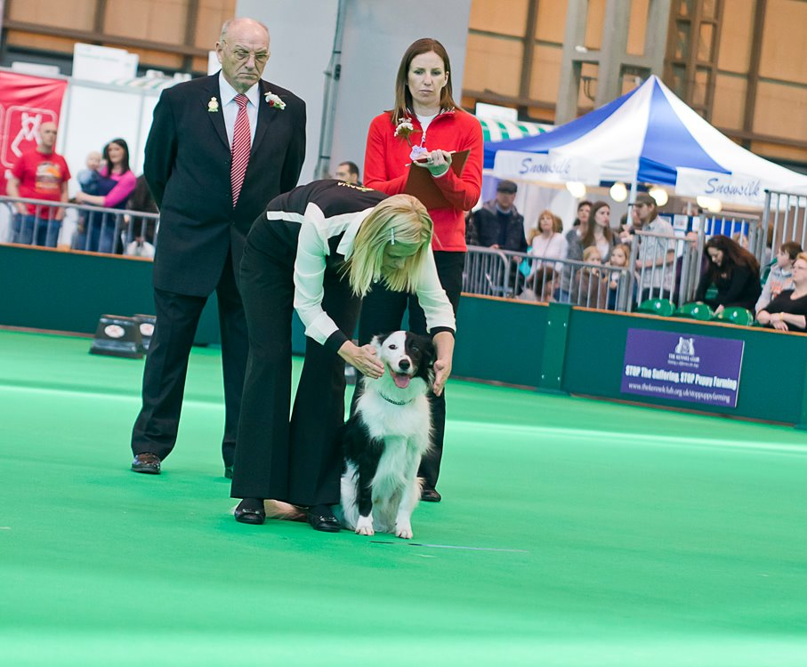 Ink Directed Retreive Crufts