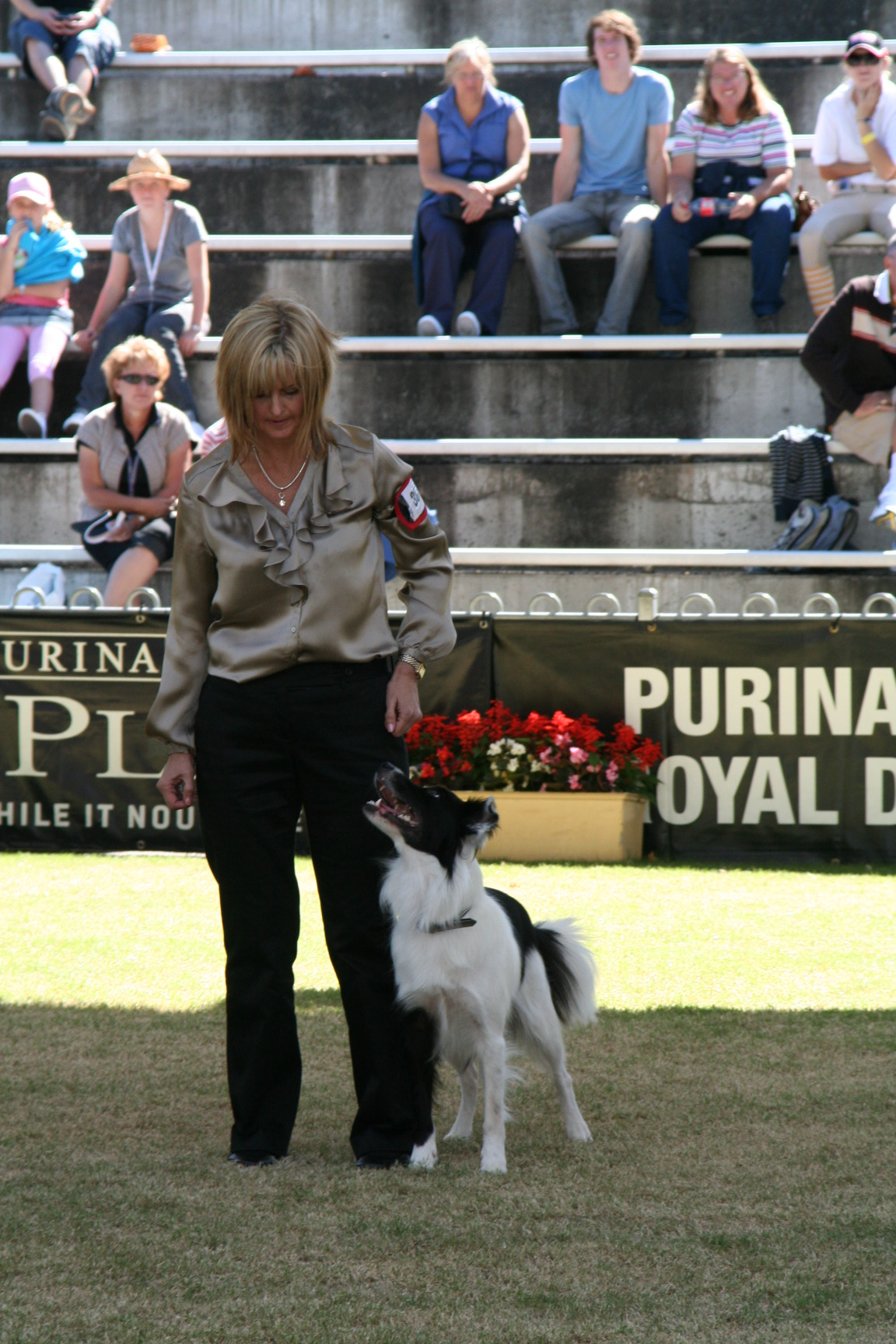 Ink Sydney Royal Obedience