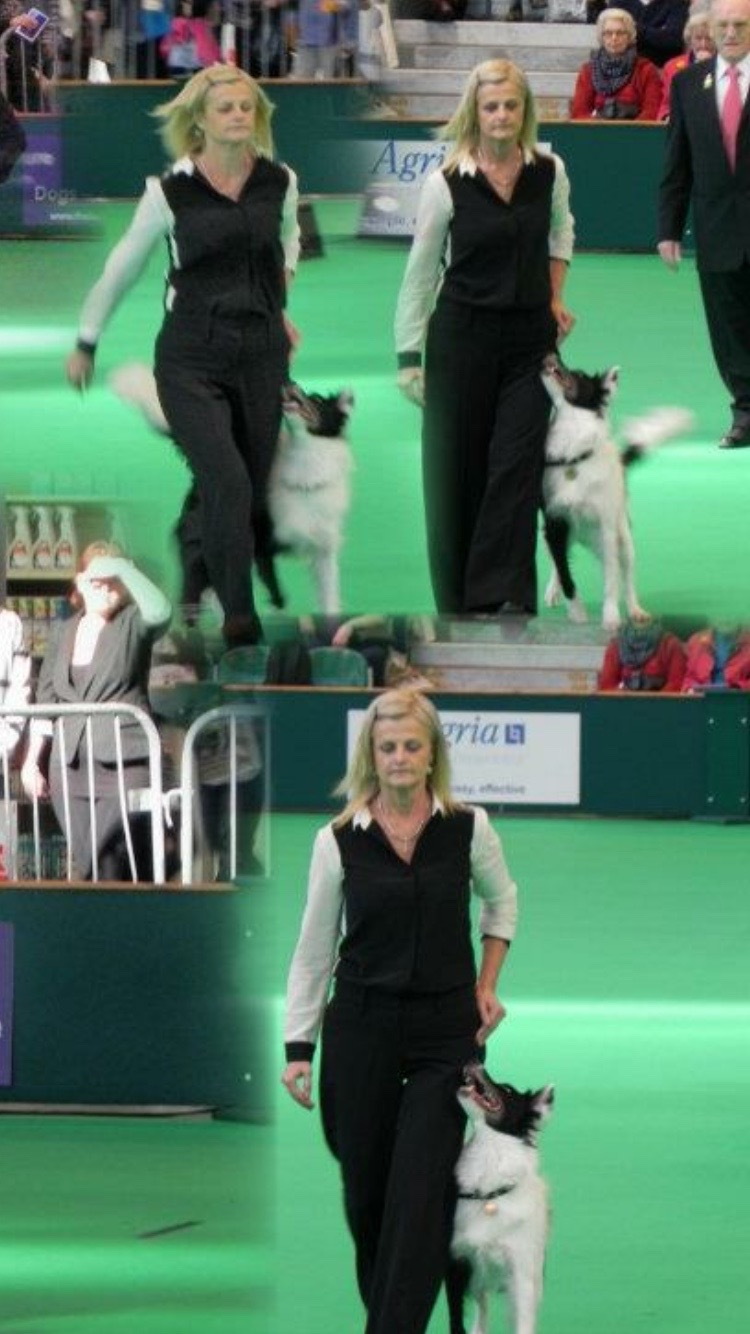 Ink Crufts Word Cup UK