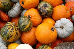 pumpkins-940x626.jpg