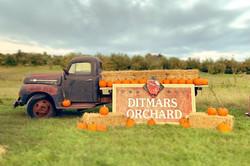Pumpkin Truck.jpg