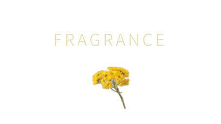 人気のaujuaディオーラム。香りは何だか知ってますか??