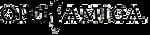 top_logo_amica.png