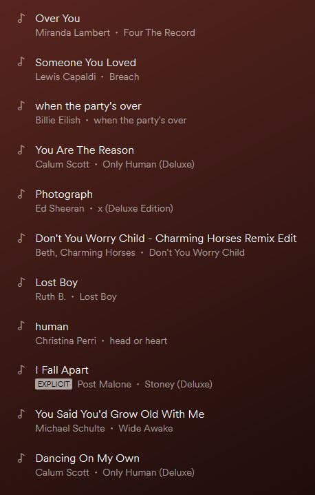 names of songs from a playlist