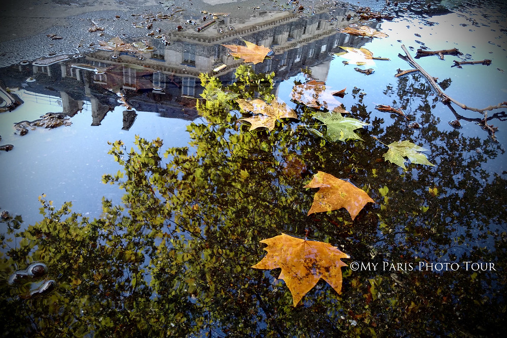 reflejos agua París otoño