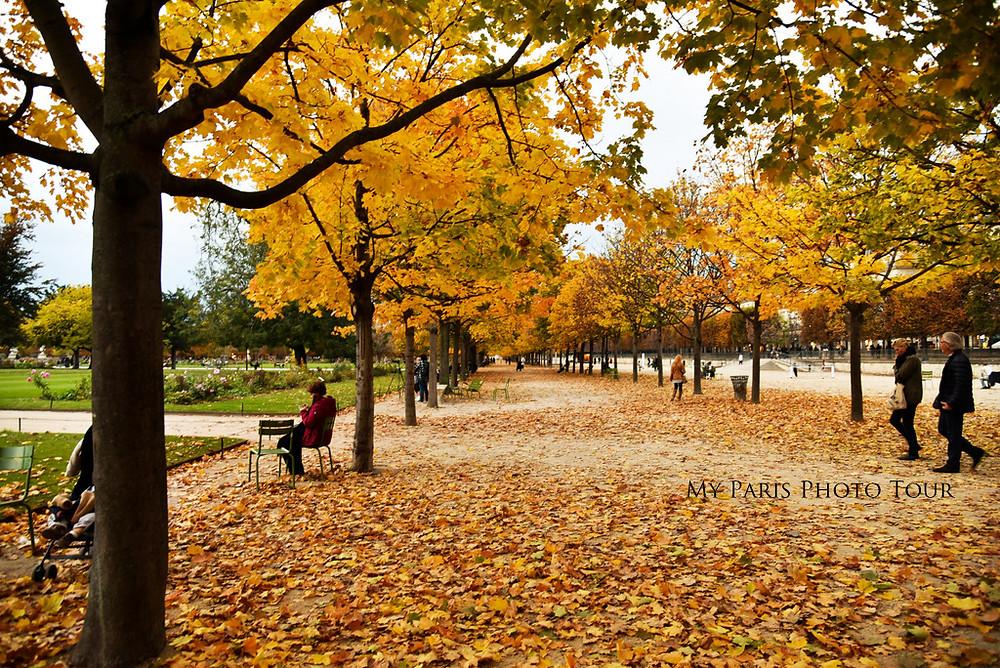 Jardín de las Tullerías en otoño París