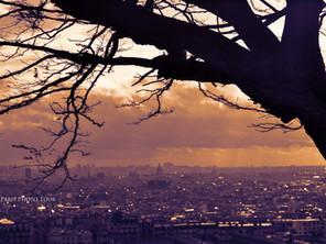 C'est l'hiver, il est temps de photographier les arbres ...