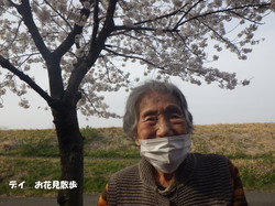 お花見散歩 (2)