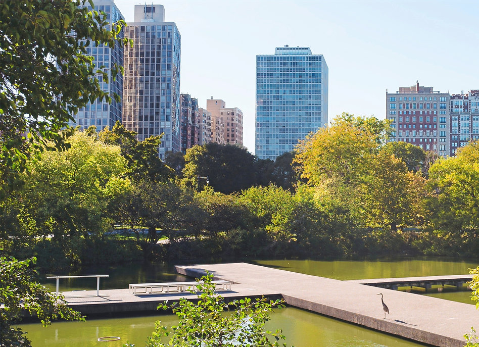 LincolnPark_edited.jpg