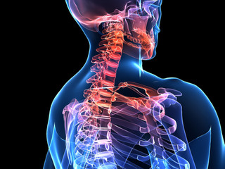 "Neck and Shoulder Pain: Implications of ""text neck"" and ""Forward head posture"""
