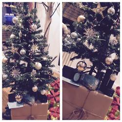 Foto Baum Weihnachten16