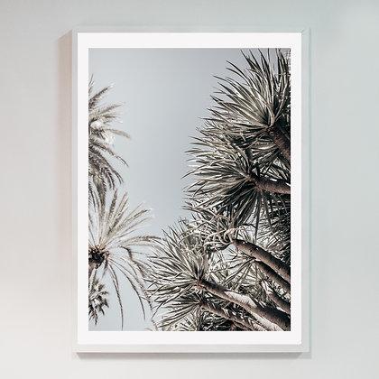 Saskia's Trees 02