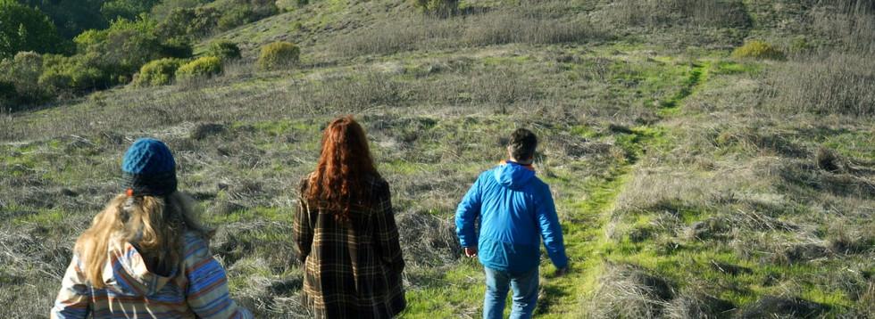 Walking in Sibley