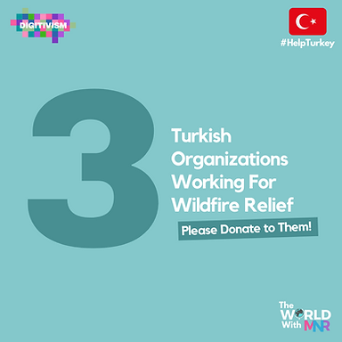 3 Turkish Organizations to Support for WildFire Relief