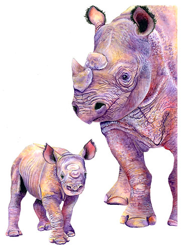 Butterfly colored Rhinos - Original
