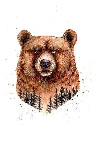 Forest Bear - Original