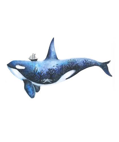 The Ocean - Original