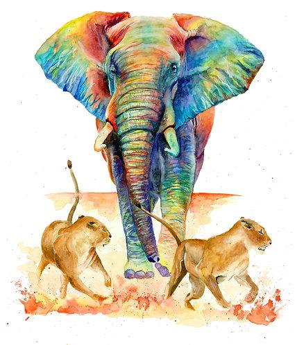 Africa - Original