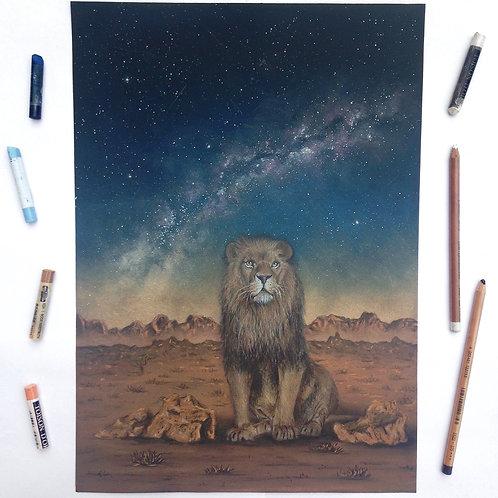 Under The Same Stars- Lion